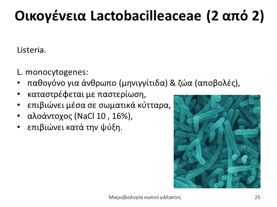 Οικογένεια Lactobacilleaceae (2 από 2)