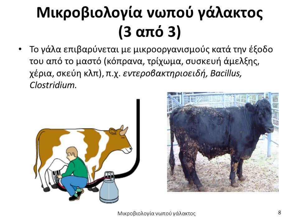 Μικροβιολογία νωπού γάλακτος (3 από 3)