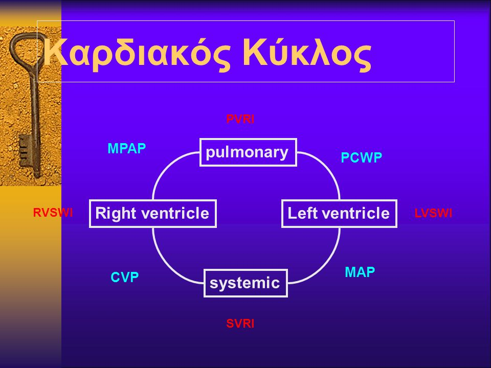 Καρδιακός Κύκλος pulmonary Right ventricle Left ventricle systemic