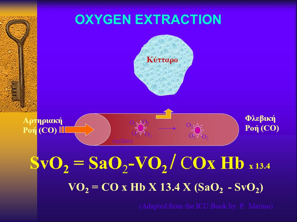 SvO2 = SaO2-VO2 / COx Hb x 13.4 OXYGEN EXTRACTION