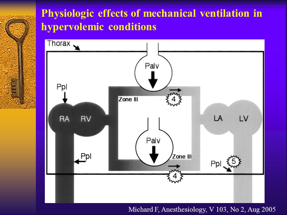 Physiologic effects of mechanical ventilation in