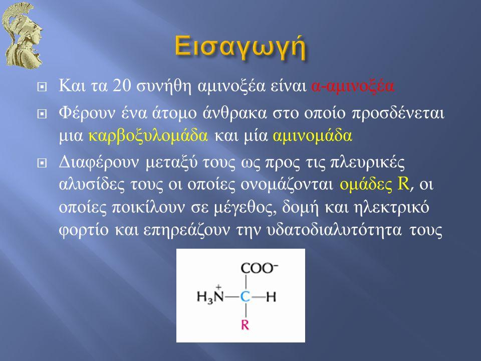 Εισαγωγή Και τα 20 συνήθη αμινοξέα είναι α-αμινοξέα