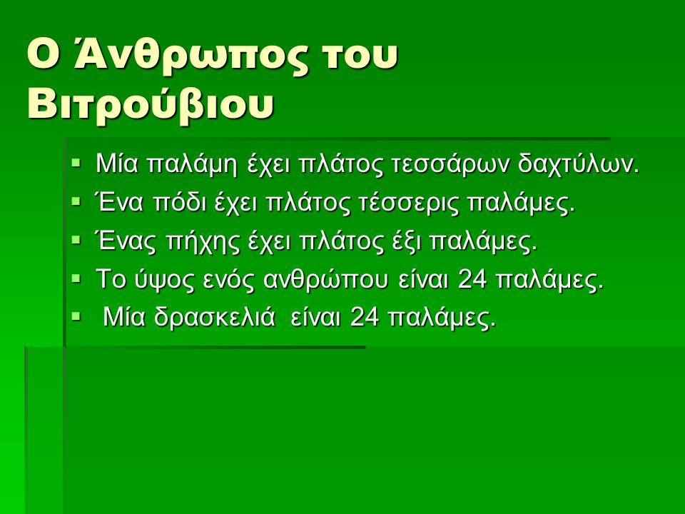 Ο Άνθρωπος του Βιτρούβιου