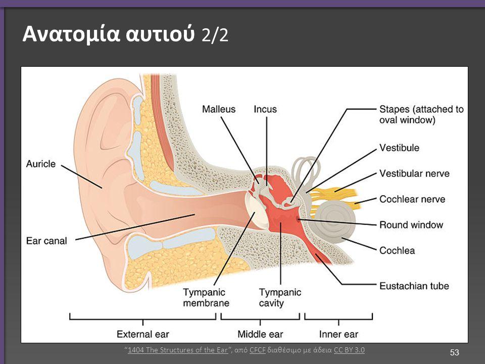 Μέσο ους Blausen 0330 EarAnatomy MiddleEar , από Elboy99 διαθέσιμο με άδεια CC BY 3.0