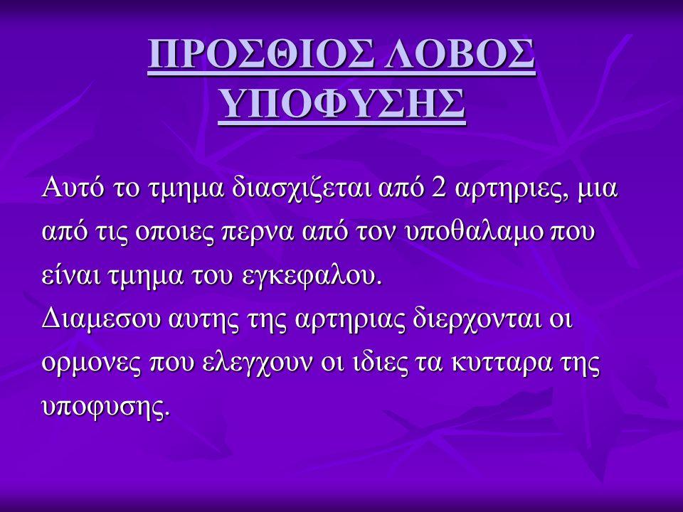 ΠΡΟΣΘΙΟΣ ΛΟΒΟΣ ΥΠΟΦΥΣΗΣ