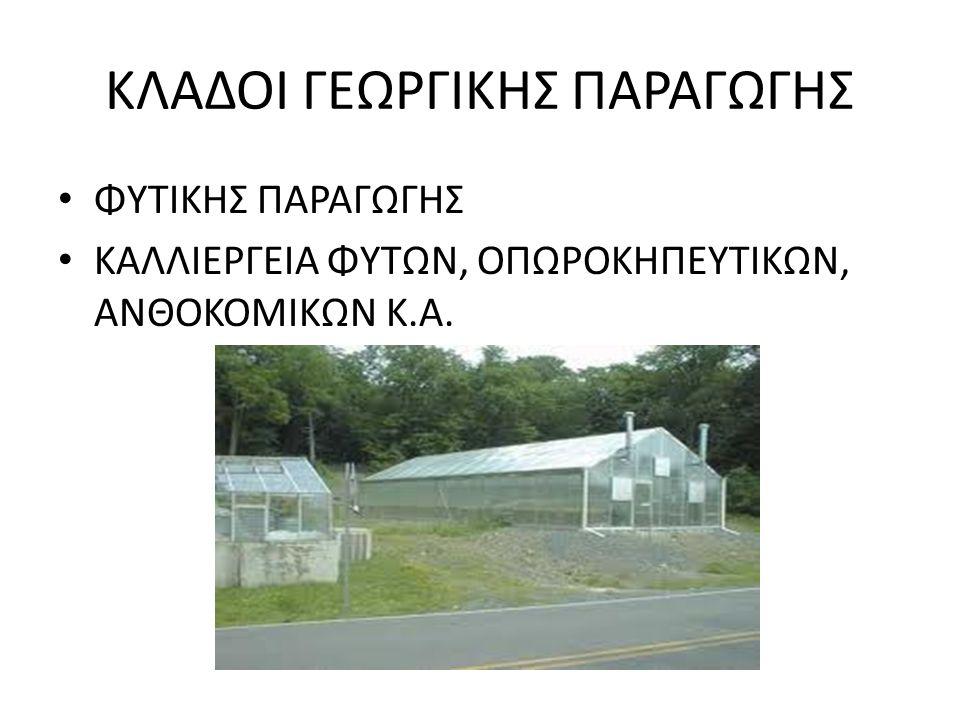 ΚΛΑΔΟΙ ΓΕΩΡΓΙΚΗΣ ΠΑΡΑΓΩΓΗΣ
