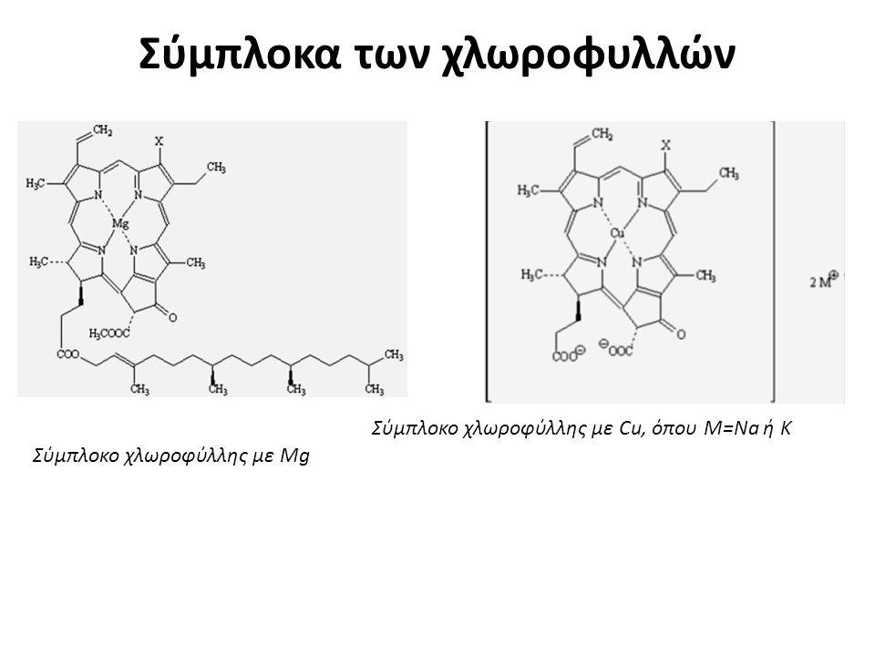 Σύμπλοκα των χλωροφυλλών
