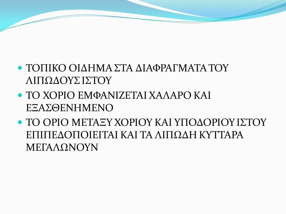 ΤΟΠΙΚΟ ΟΙΔΗΜΑ ΣΤΑ ΔΙΑΦΡΑΓΜΑΤΑ ΤΟΥ ΛΙΠΩΔΟΥΣ ΙΣΤΟΥ