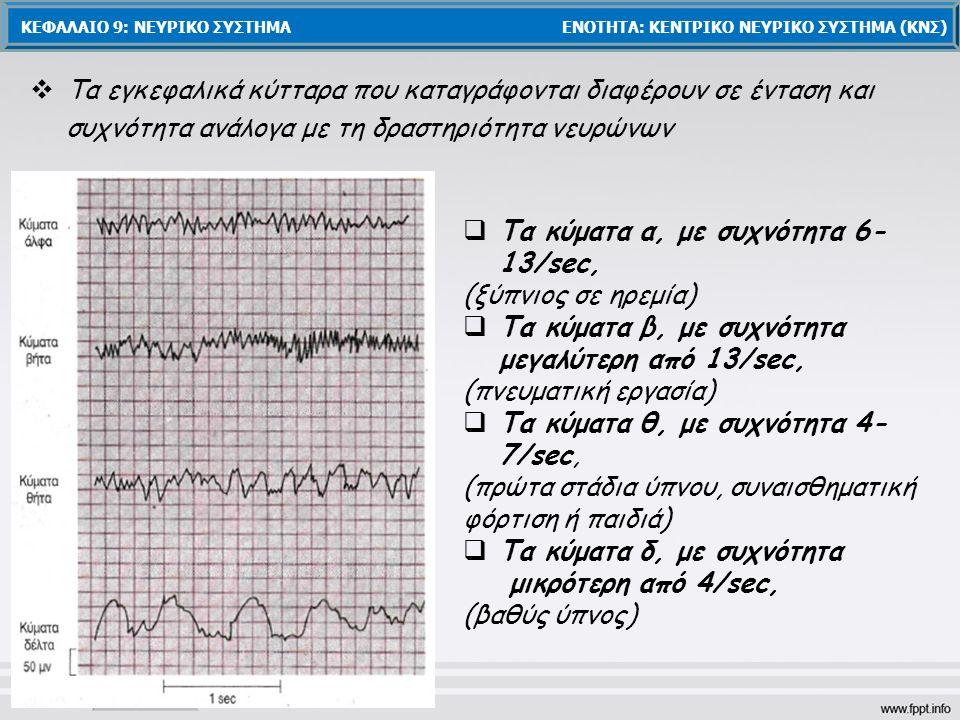 Τα κύματα α, με συχνότητα 6-13/sec, (ξύπνιος σε ηρεμία)