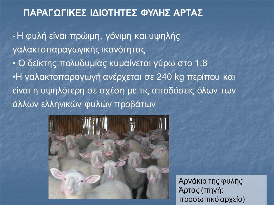 ΠΑΡΑΓΩΓΙΚΕΣ ΙΔΙΟΤΗΤΕΣ ΦΥΛΗΣ ΑΡΤΑΣ