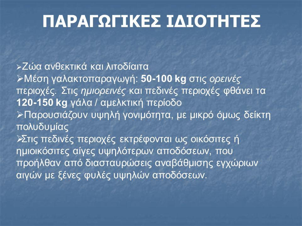 ΠΑΡΑΓΩΓΙΚΕΣ ΙΔΙΟΤΗΤΕΣ