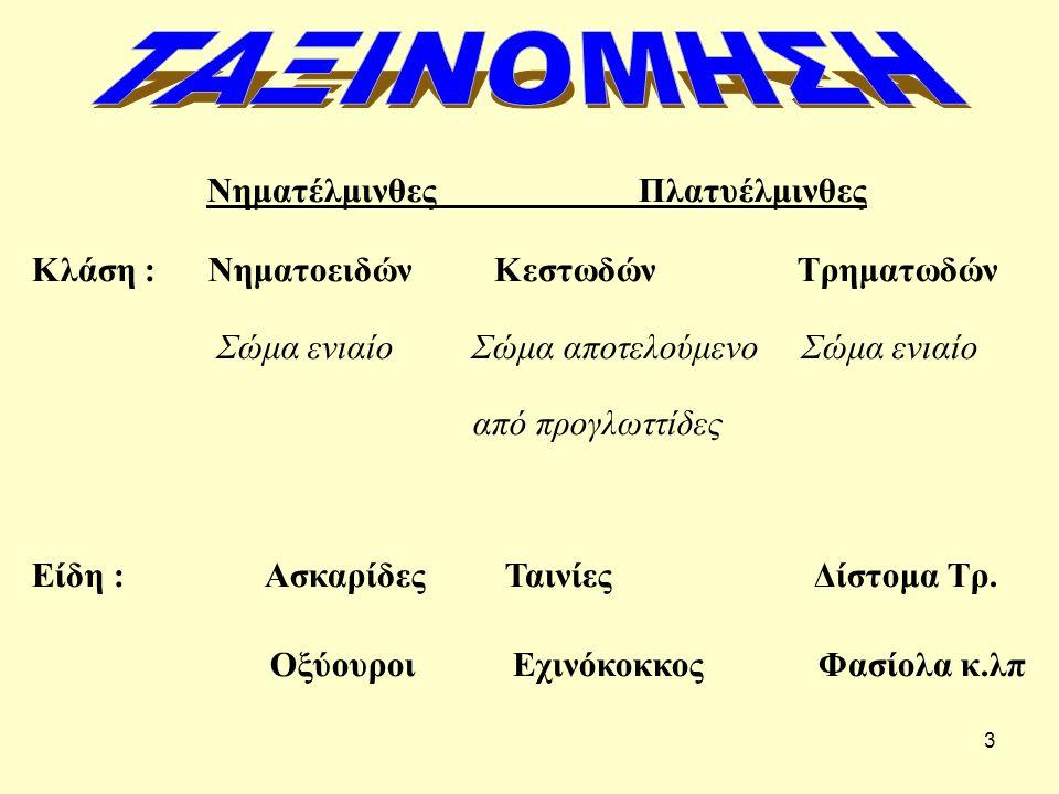 ΤΑΞΙΝΟΜΗΣΗ Νηματέλμινθες Πλατυέλμινθες