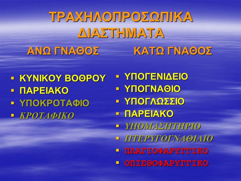 ΤΡΑΧΗΛΟΠΡΟΣΩΠΙΚΑ ΔΙΑΣΤΗΜΑΤΑ