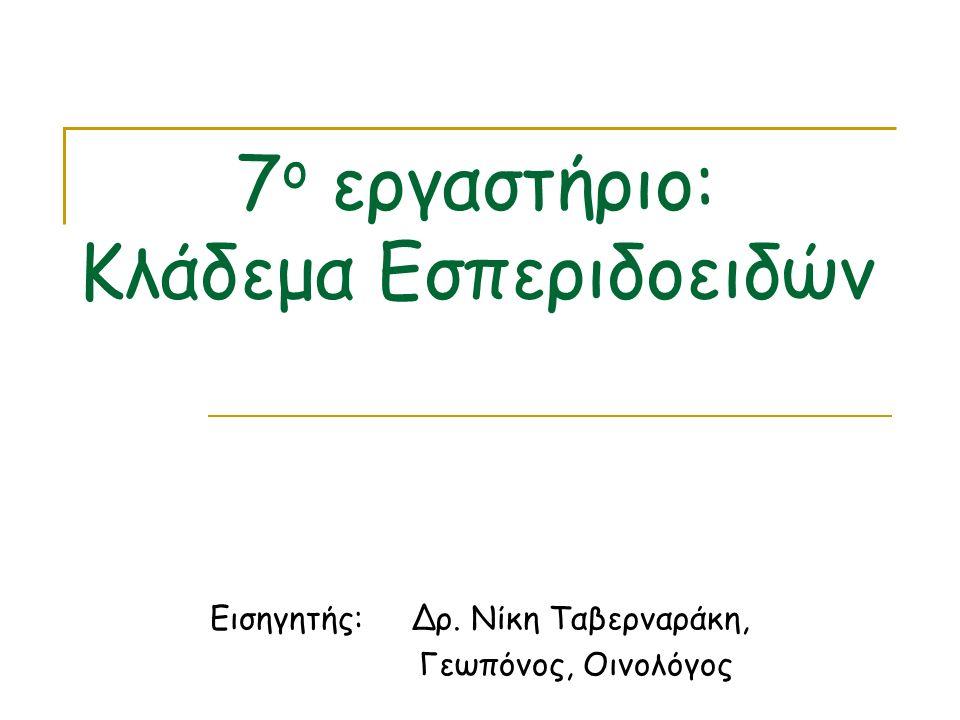 7ο εργαστήριο: Κλάδεμα Εσπεριδοειδών