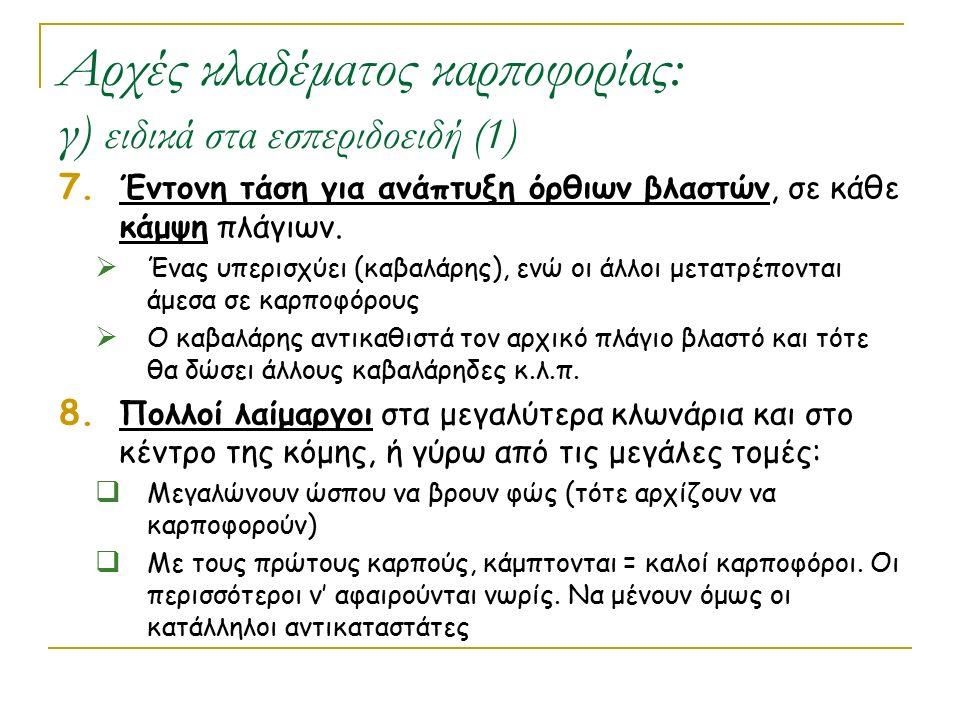 Αρχές κλαδέματος καρποφορίας: γ) ειδικά στα εσπεριδοειδή (1)