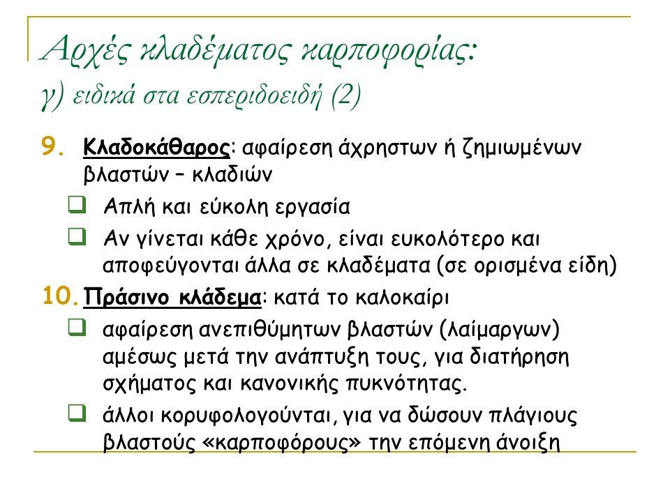 Αρχές κλαδέματος καρποφορίας: γ) ειδικά στα εσπεριδοειδή (2)