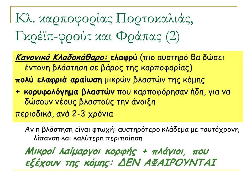 Κλ. καρποφορίας Πορτοκαλιάς, Γκρέϊπ-φρούτ και Φράπας (2)