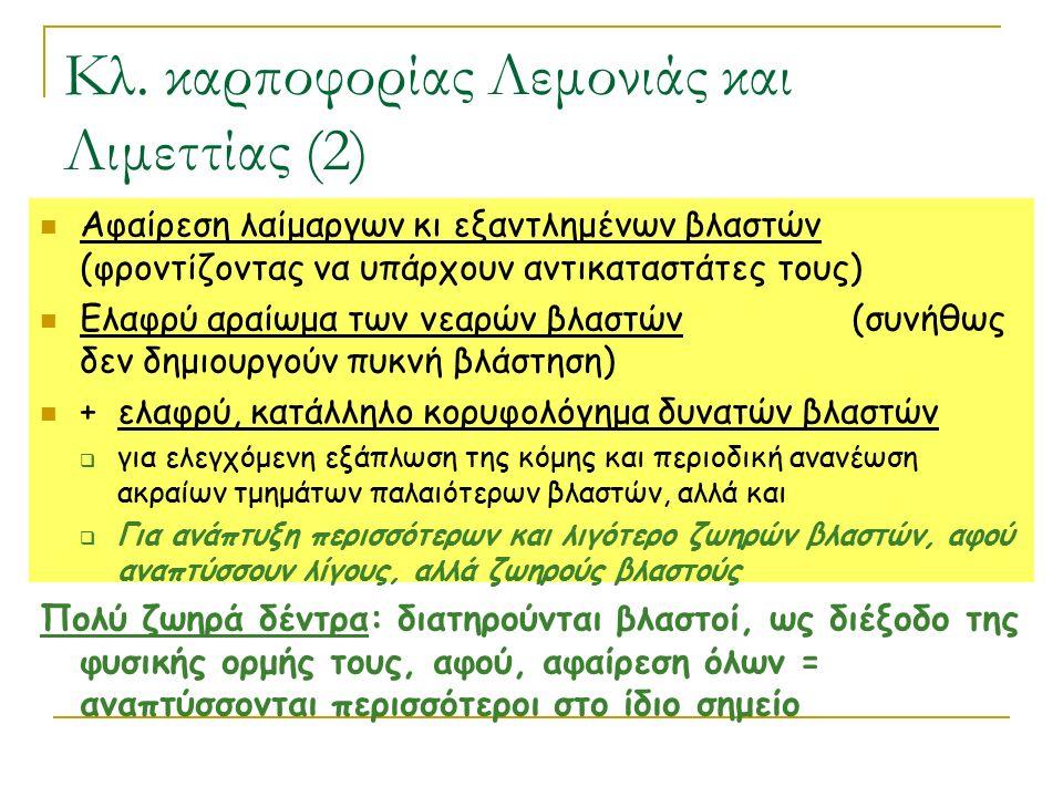 Κλ. καρποφορίας Λεμονιάς και Λιμεττίας (2)