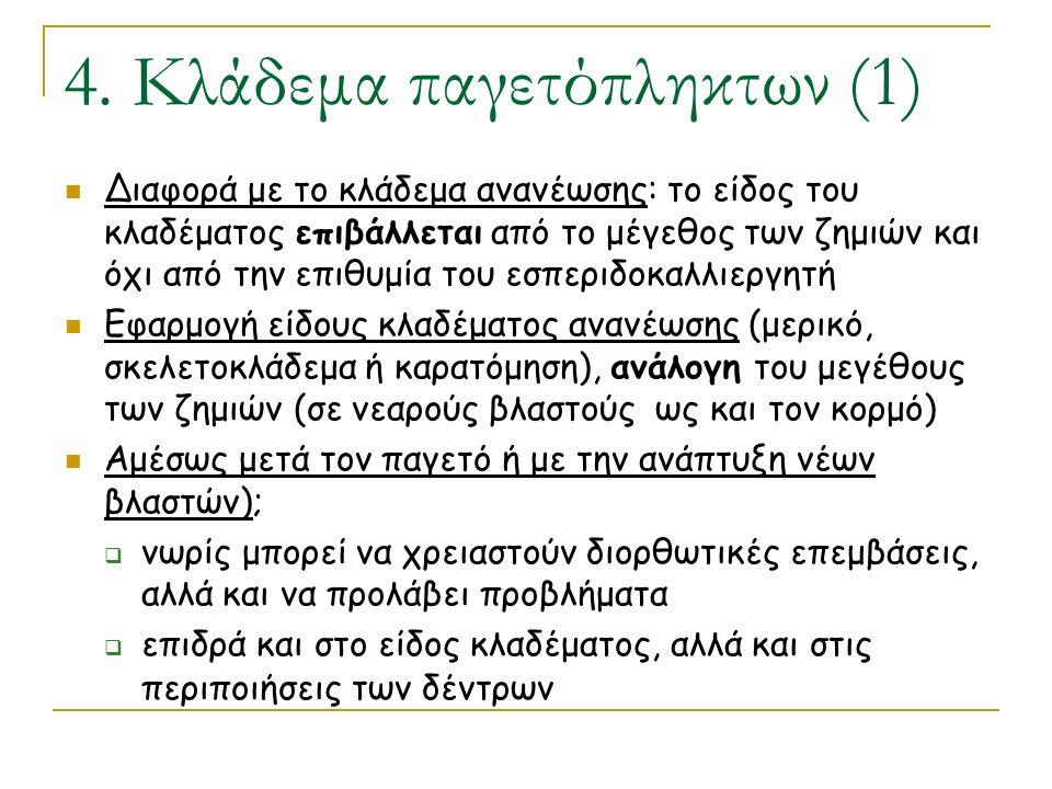 4. Κλάδεμα παγετόπληκτων (1)