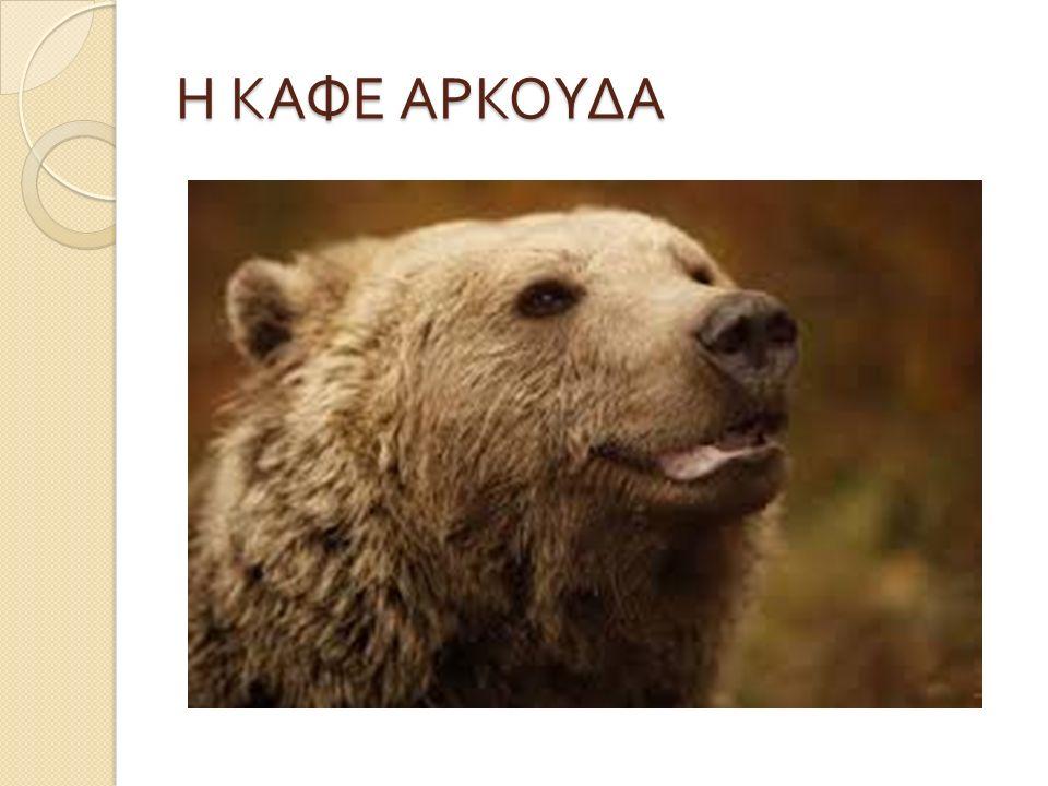 Η ΚΑΦΕ ΑΡΚΟΥΔΑ