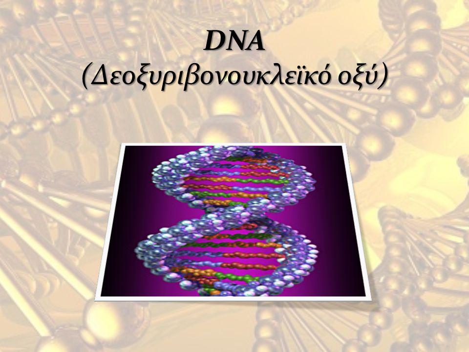 DNA (Δεοξυριβονουκλεϊκό οξύ)