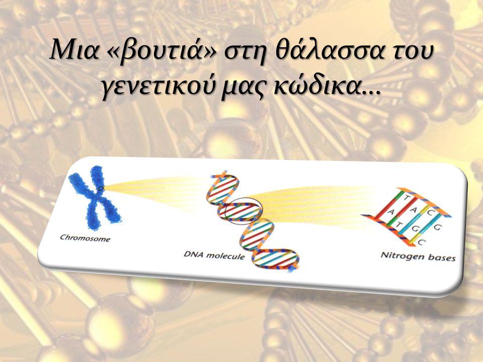 Mια «βουτιά» στη θάλασσα του γενετικού μας κώδικα…