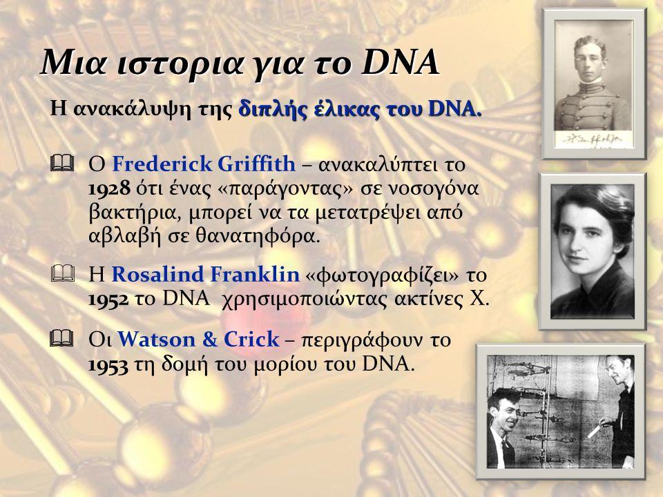 Μια ιστορια για το DNA H ανακάλυψη της διπλής έλικας του DNA.