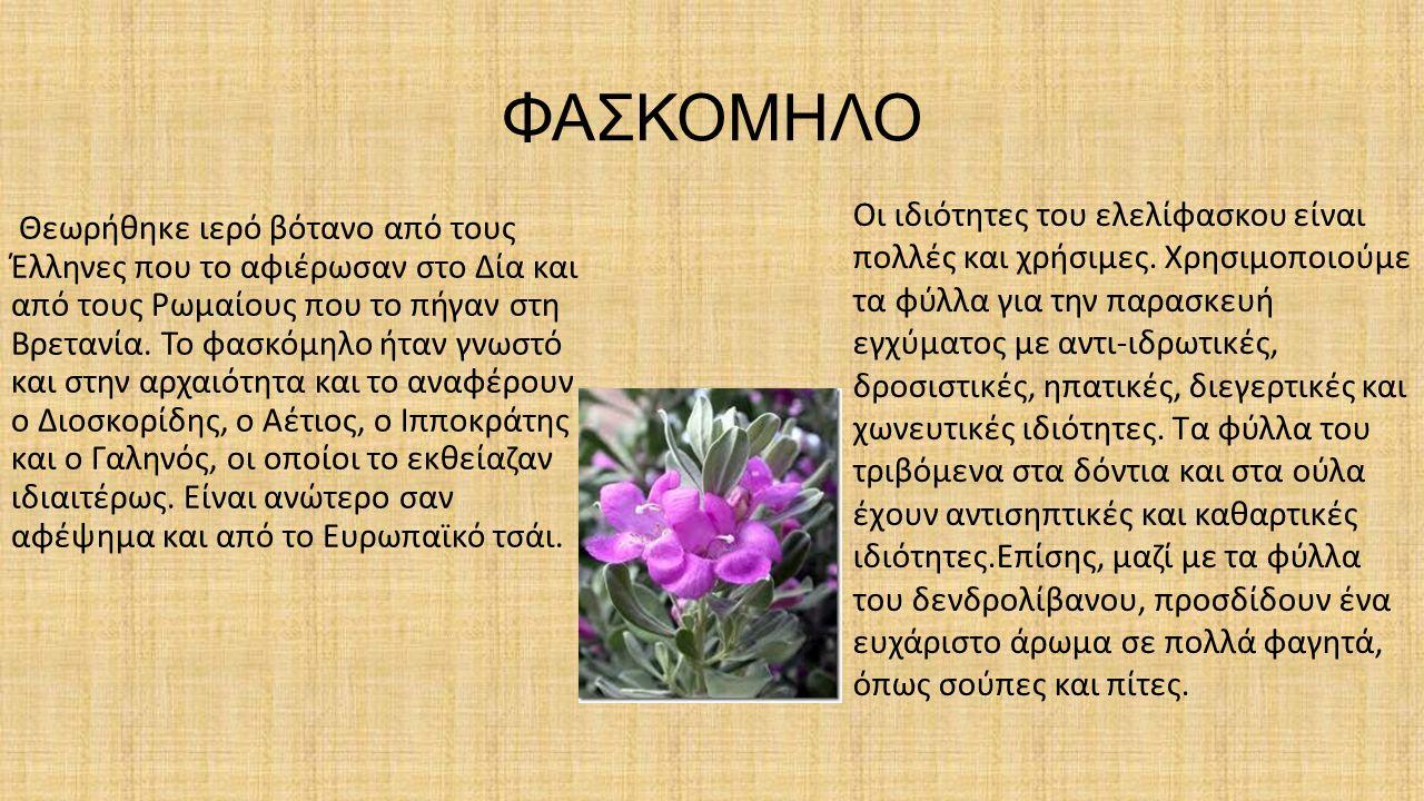 ΦΑΣΚΟΜΗΛΟ
