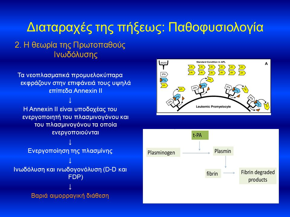 Διαταραχές της πήξεως: Παθοφυσιολογία