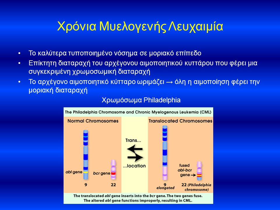 Χρόνια Μυελογενής Λευχαιμία