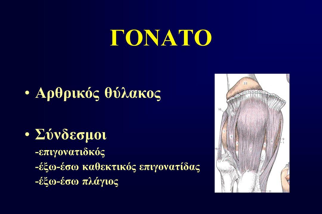 ΓΟΝΑΤΟ Αρθρικός θύλακος Σύνδεσμοι -επιγονατιδκός