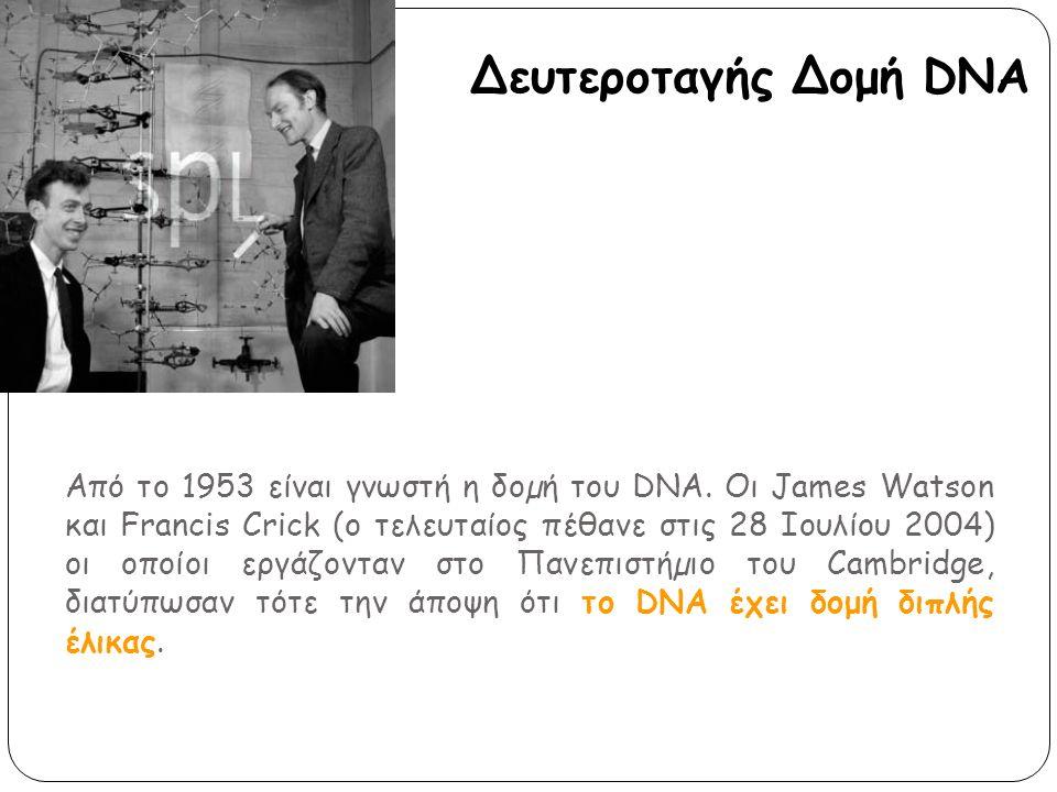 Δευτεροταγής Δομή DNA