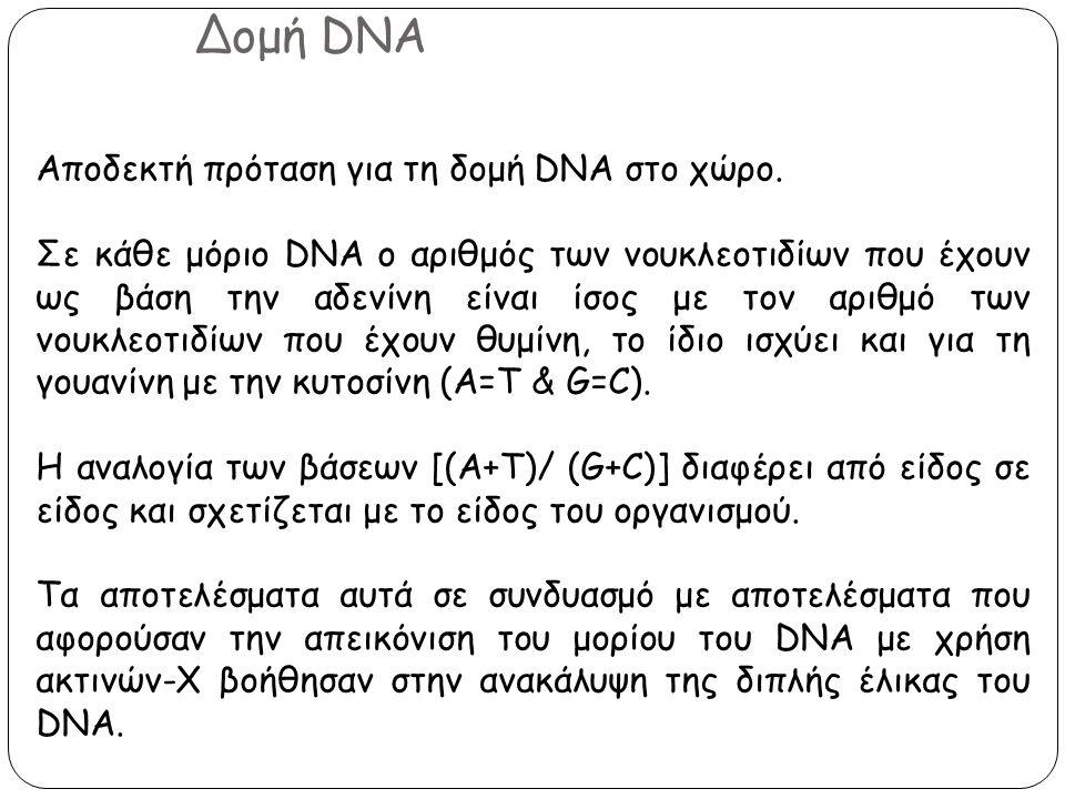 Δομή DNA Αποδεκτή πρόταση για τη δομή DNA στο χώρο.