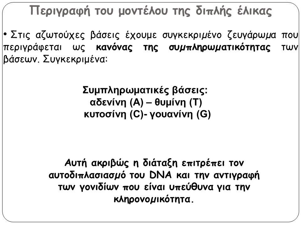 Περιγραφή του μοντέλου της διπλής έλικας
