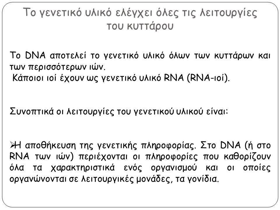 Το γενετικό υλικό ελέγχει όλες τις λειτουργίες του κυττάρου