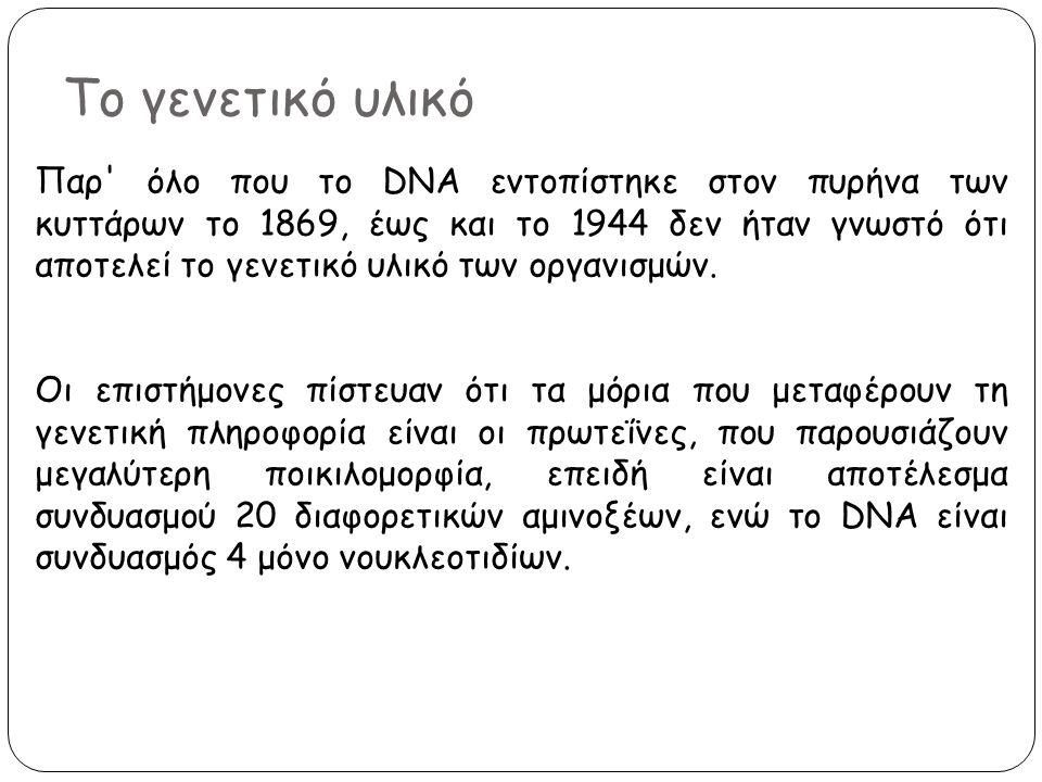 Το γενετικό υλικό