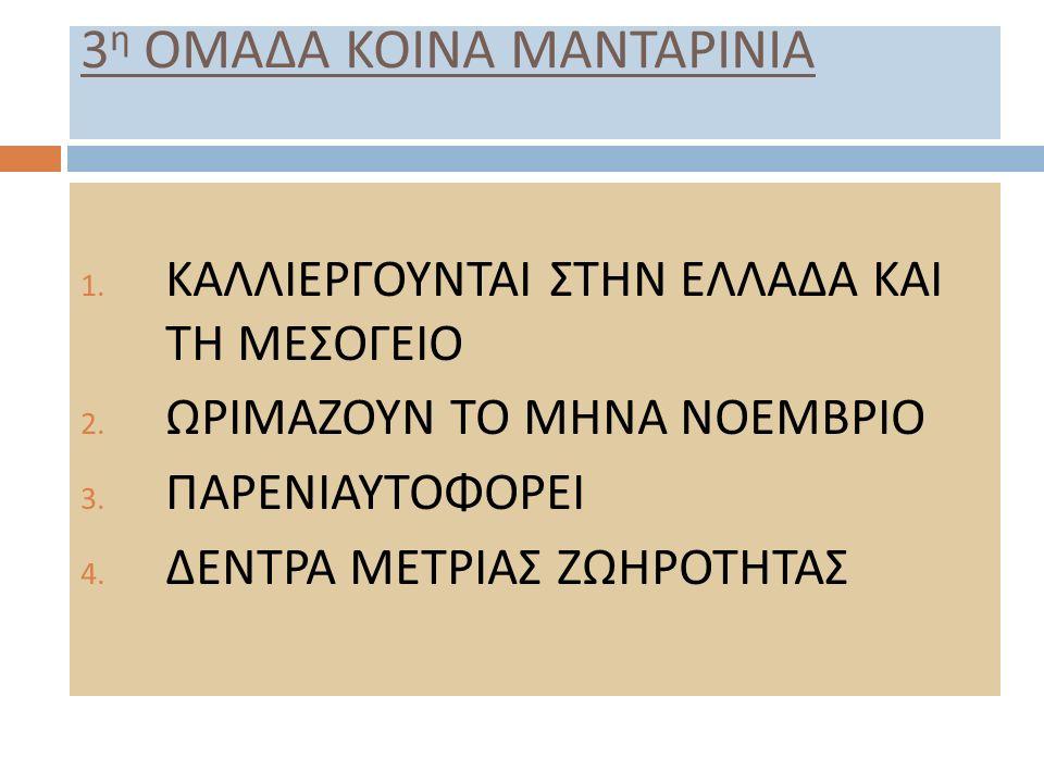 3η ΟΜΑΔΑ ΚΟΙΝΑ ΜΑΝΤΑΡΙΝΙΑ
