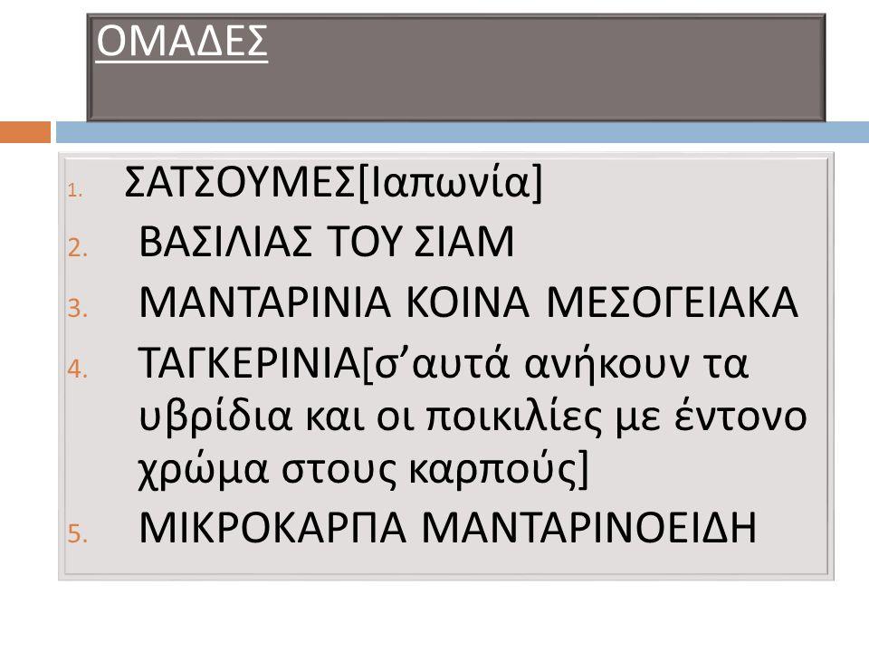 ΜΑΝΤΑΡΙΝΙΑ ΚΟΙΝΑ ΜΕΣΟΓΕΙΑΚΑ
