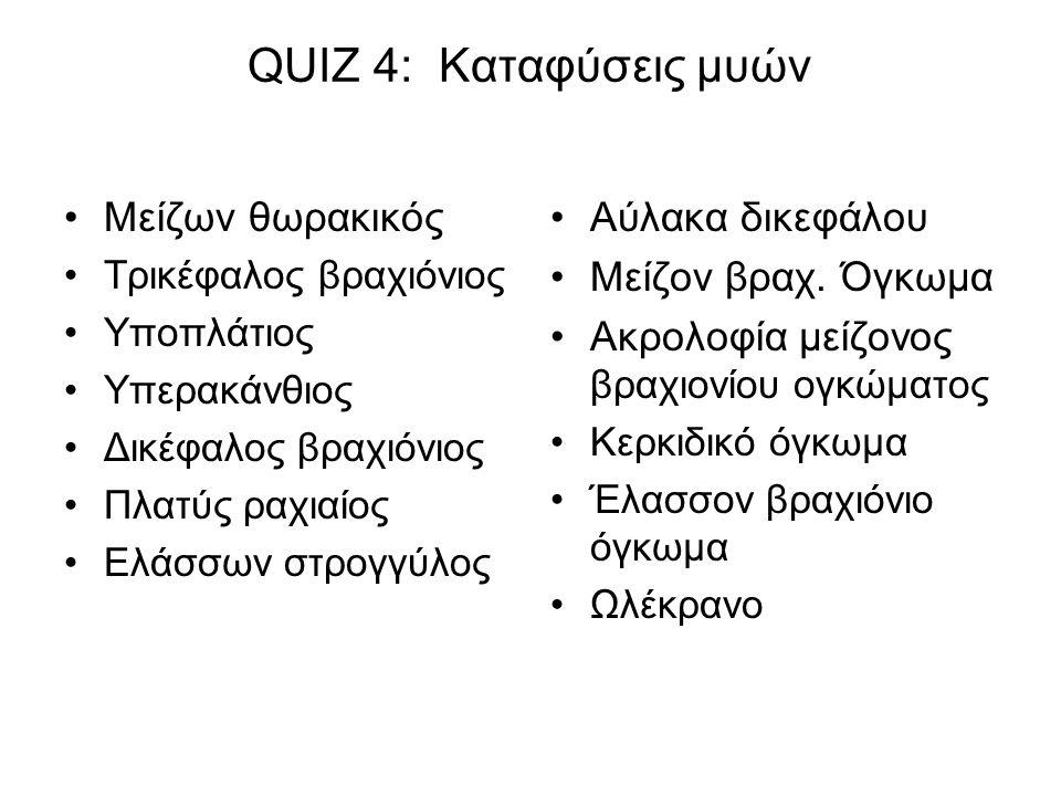 QUIZ 4: Καταφύσεις μυών Μείζων θωρακικός Αύλακα δικεφάλου