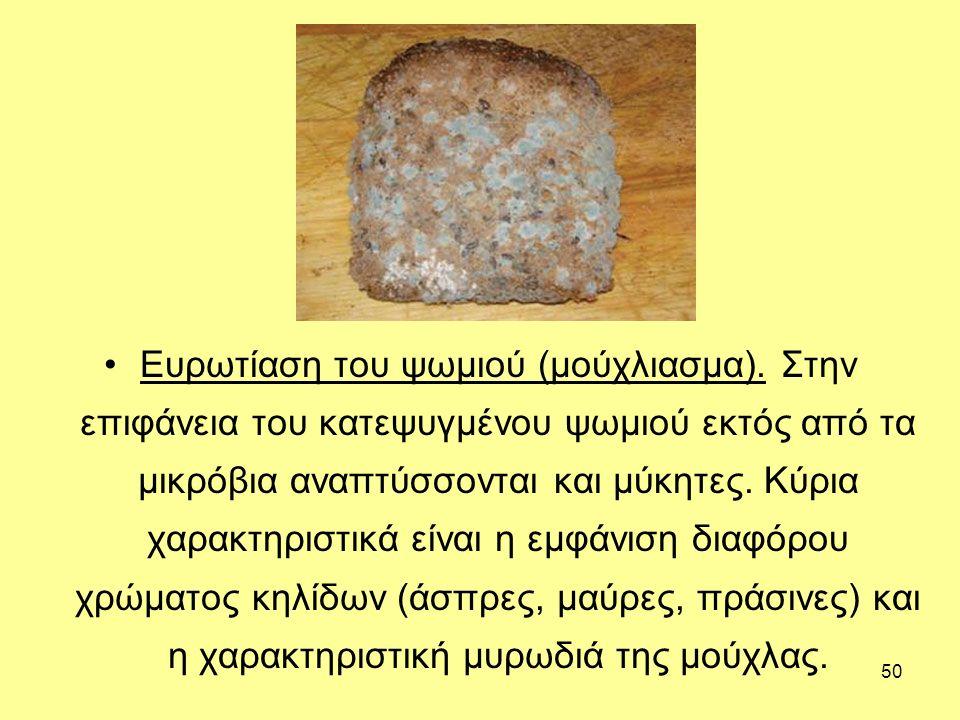 Ευρωτίαση του ψωμιού (μούχλιασμα)