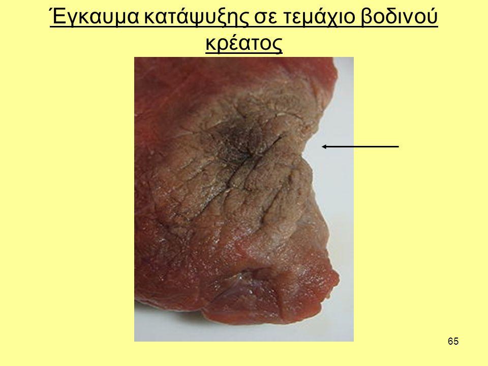 Έγκαυμα κατάψυξης σε τεμάχιο βοδινού κρέατος