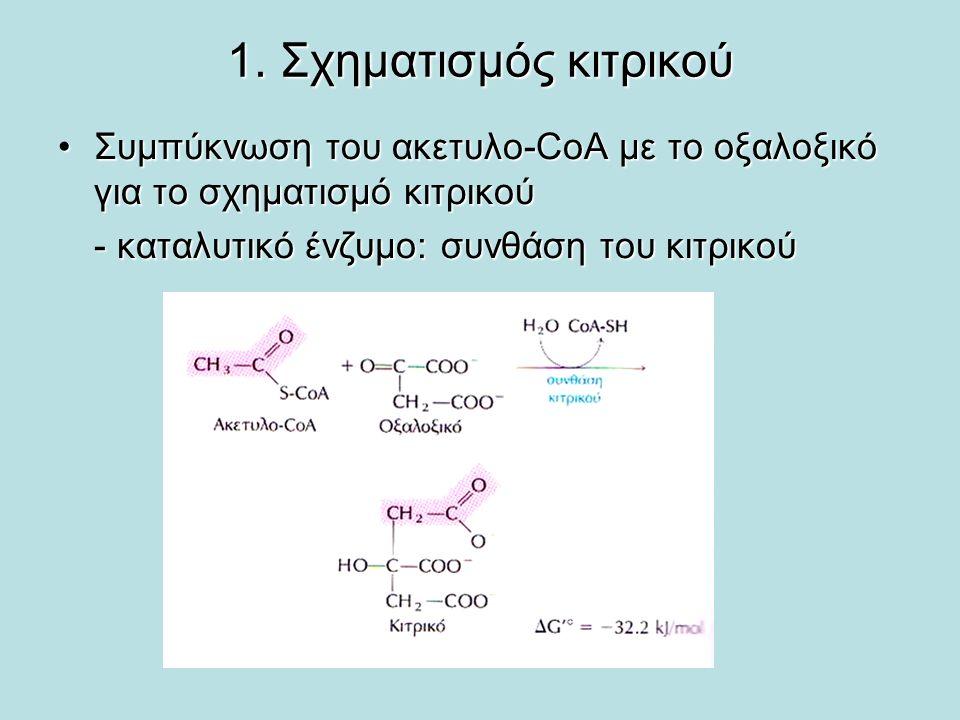 1. Σχηματισμός κιτρικού Συμπύκνωση του ακετυλο-CoA με το οξαλοξικό για το σχηματισμό κιτρικού.
