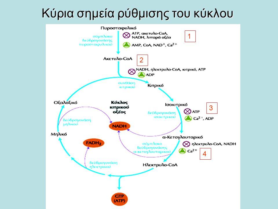Κύρια σημεία ρύθμισης του κύκλου
