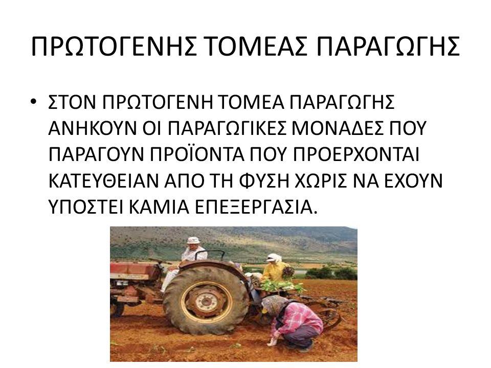 ΠΡΩΤΟΓΕΝΗΣ ΤΟΜΕΑΣ ΠΑΡΑΓΩΓΗΣ