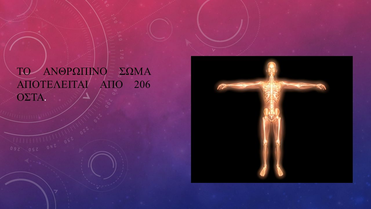Το ανθρωπινο σωμα αποτελειται απο 206 οστα.
