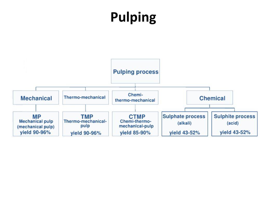 RMP (Refiner Mechanical Pulp)