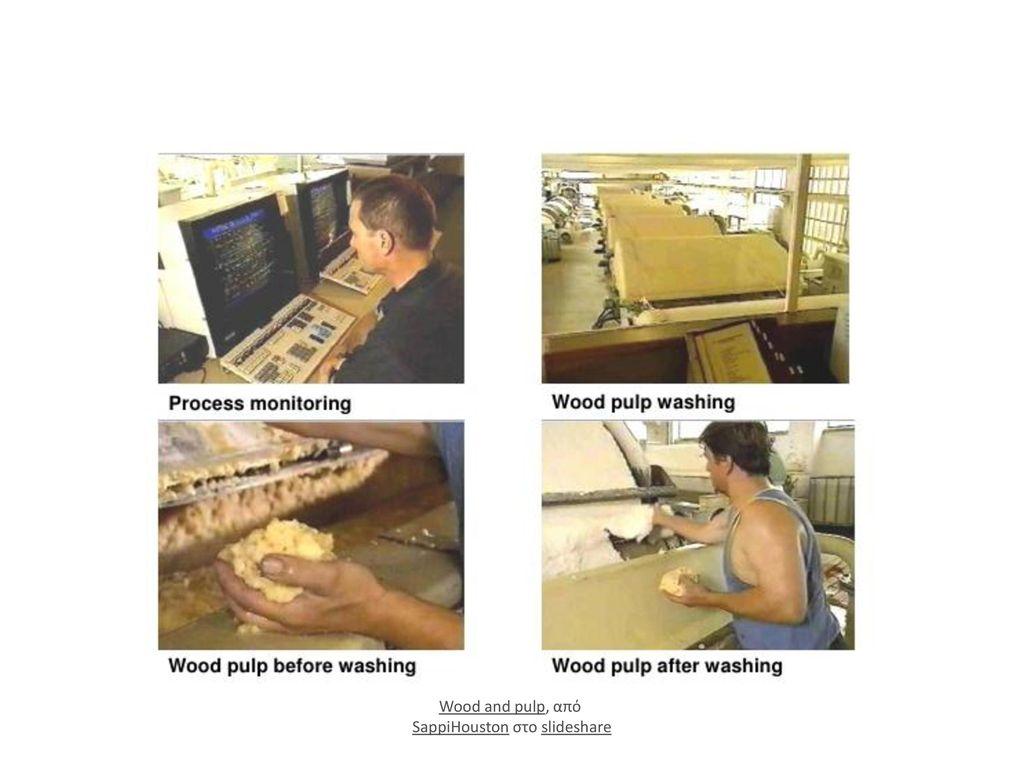 Wood and pulp, από SappiHouston στο slideshare