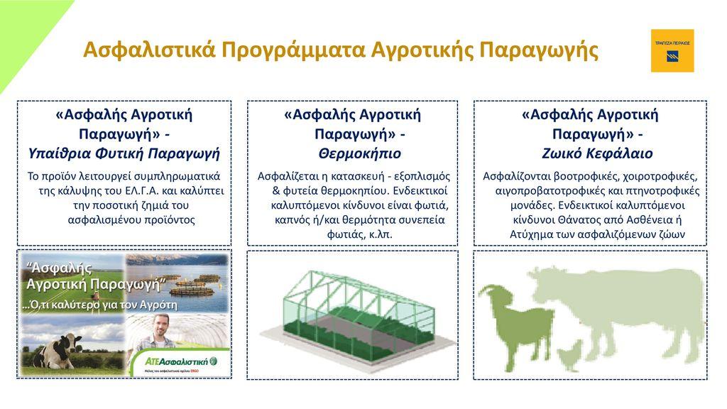 Ασφαλιστικά Προγράμματα Αγροτικής Παραγωγής