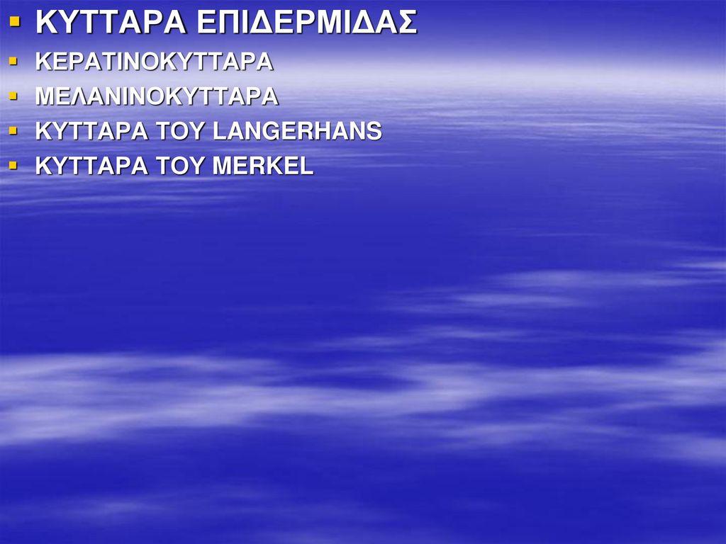 ΚΥΤΤΑΡΑ ΕΠΙΔΕΡΜΙΔΑΣ ΚΕΡΑΤΙΝΟΚΥΤΤΑΡΑ ΜΕΛΑΝΙΝΟΚΥΤΤΑΡΑ