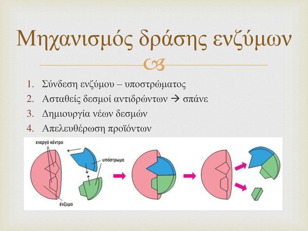 Μηχανισμός δράσης ενζύμων